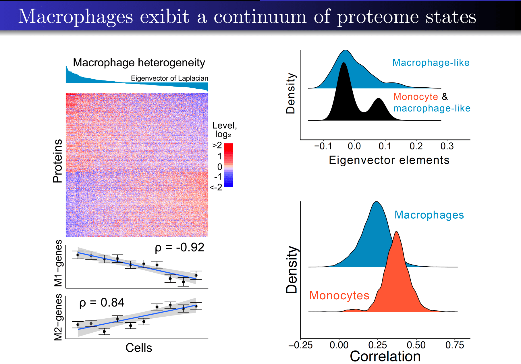 Heterogeneity of polarized macrophages